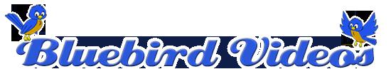 Bluebird Videos